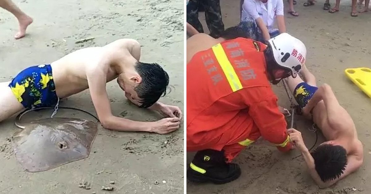 Man gets stingray hooked onto his genitals while swimming in the sea