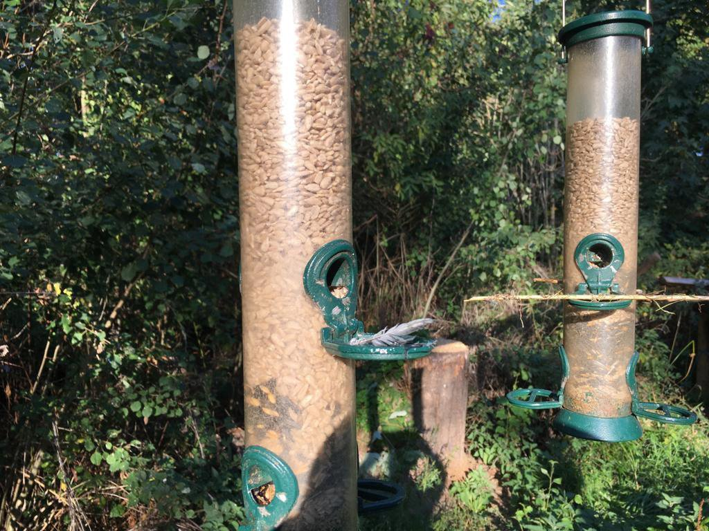 WESSEX NEWS AGENCY Jim Hardy email news@britishnews.co.uk mobile 07501 221880 STORY CATCHLINE: GLUED Birds found glued to feeders on a Sussex wildlife reserve may have been killed for people to eat, nature lovers fear. Pic shows some of the feeders