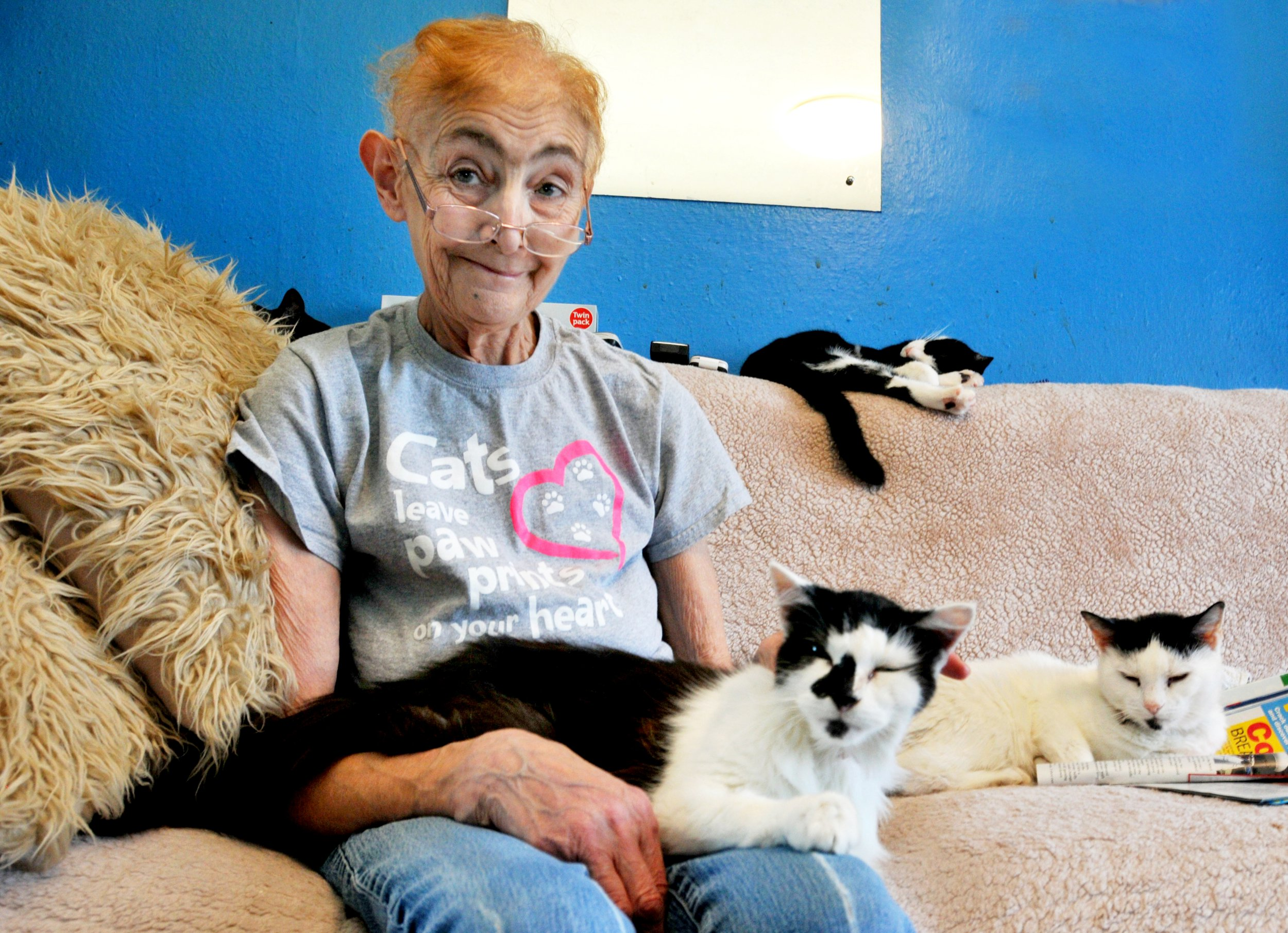 """Marlene Brewer runs animal sanctuary, Cats in Crisis, has been caring for vulnerable cats for over 20 years and has been forced to rehome 70 cats after being diagnosed with terminal cancer. See ROSS PARRY story RPYCATS. A woman who rescued thousands of cats in her lifetime is in a race against time to find homes for 40 of them - after being diagnosed with terminal lung cancer. Seven weeks ago Marlene Brewer, who runs cat rescue charity, Cats in Crisis, from her home was told the devastating news she would not live to see Christmas. She has so far managed to rehome 30 of the 70 cats she was caring for but needs help to find forever homes for the rest. The mother-of-four set up the charity in her home in Bamber Bridge, Lancs., 21 years ago and up until a few weeks ago had more than 80 feline friends. Sadly around 10 cats that were not rehomeable and had health problems were put down last week, which Marlene described as """"just awful""""."""