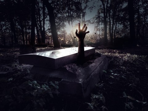 A theme park is looking for people to stay in a coffin for 30 hours for £200