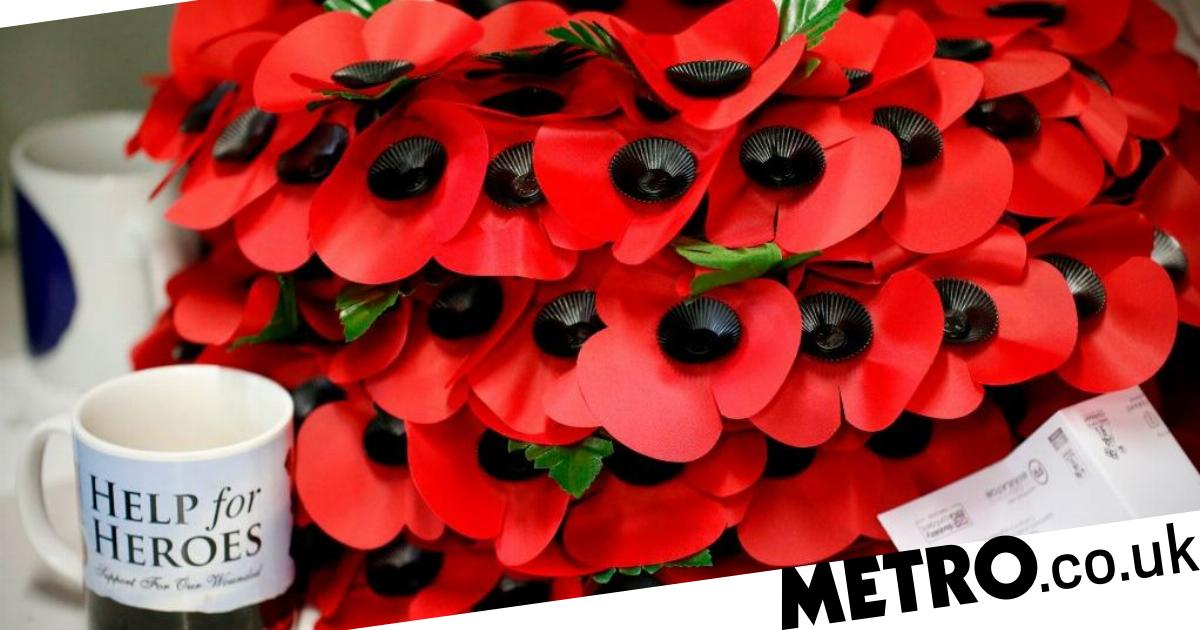 When Do Poppies Go On Sale For Remembrance Day 2018 And Where To