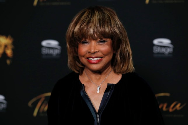 Tina Turner 'ashamed' of domestic abuse and 'could never