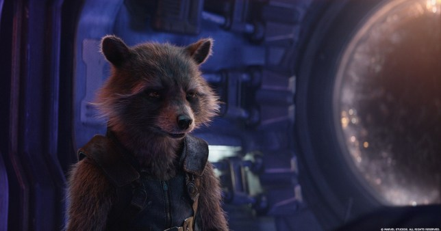 Rocket the Raccoon
