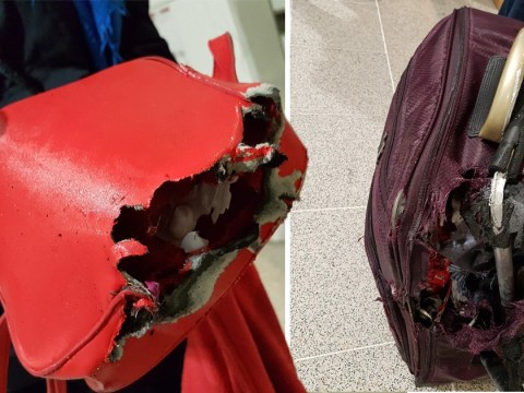 Couple find suitcase 'sodden and absolutely destroyed' after flying back from holiday