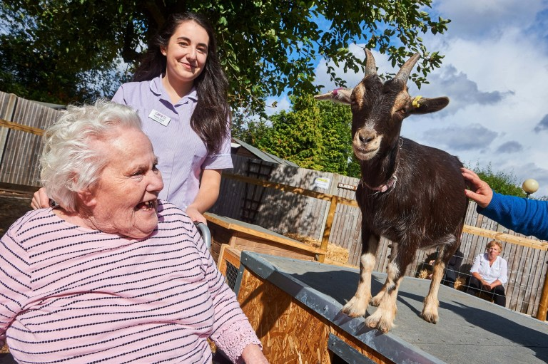 ? Licensed to simonjacobs.com. 21/09/2018 Godalming, UK. Carer Kristen Smith and resident Mary Williams with Shakespere the goat on the Broadwater Lodge farm. FREE PRESS AND PR USAGE. Photo credit : Simon Jacobs