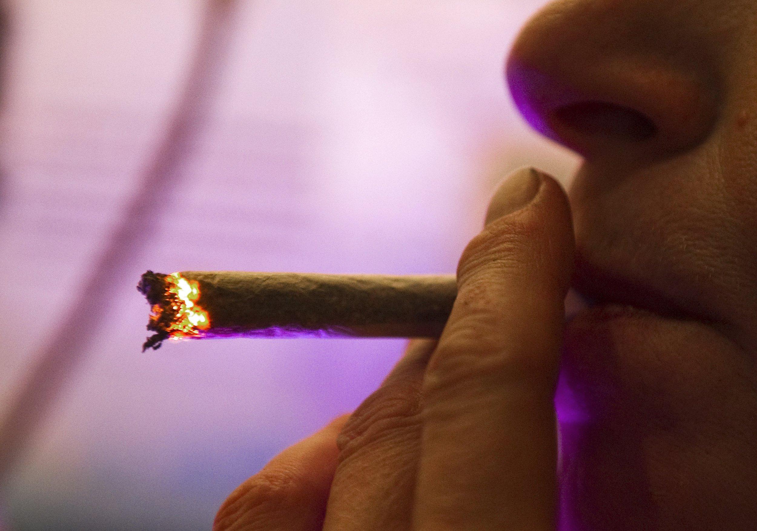 Smoking skunk could make men infertile, new study warns