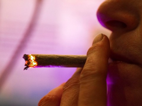 Smoking skunk could make men infertile, new study warns