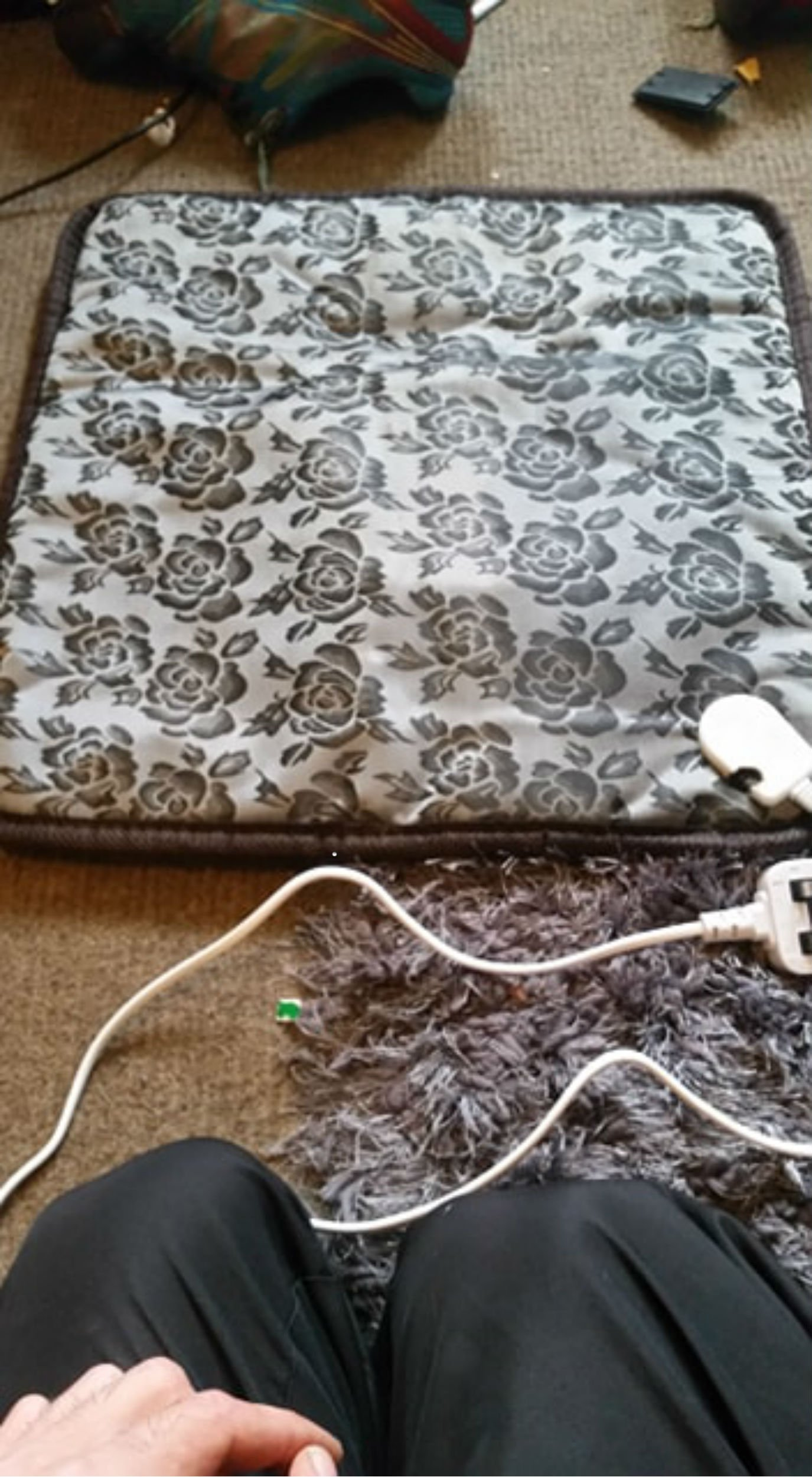 """AMAZON have removed an animal heating pad from sale after it caught fire and killed four three-day-old kittens. And the devastated owner of the kittens claims her life was only saved when the distressed mother cat woke her up in the middle of the night. Belinda Carr spent ?15.99 on a HUAYUU pet heating pad from Amazon to keep the newborn Sphynx kittens warm at her home in Telford, Shropshire. Disaster struck on September 24, the day the product arrived, just hours after the hairless kittens were settled to sleep. Belinda, 59, woke in the middle of the night to find the kittens' mother, Vito, rubbing her face, something the cat never does. She caught a smell of """"burnt sugar"""" and went to investigate. The pad and carpet had caught fire and four of the five kittens were dead from the heat."""