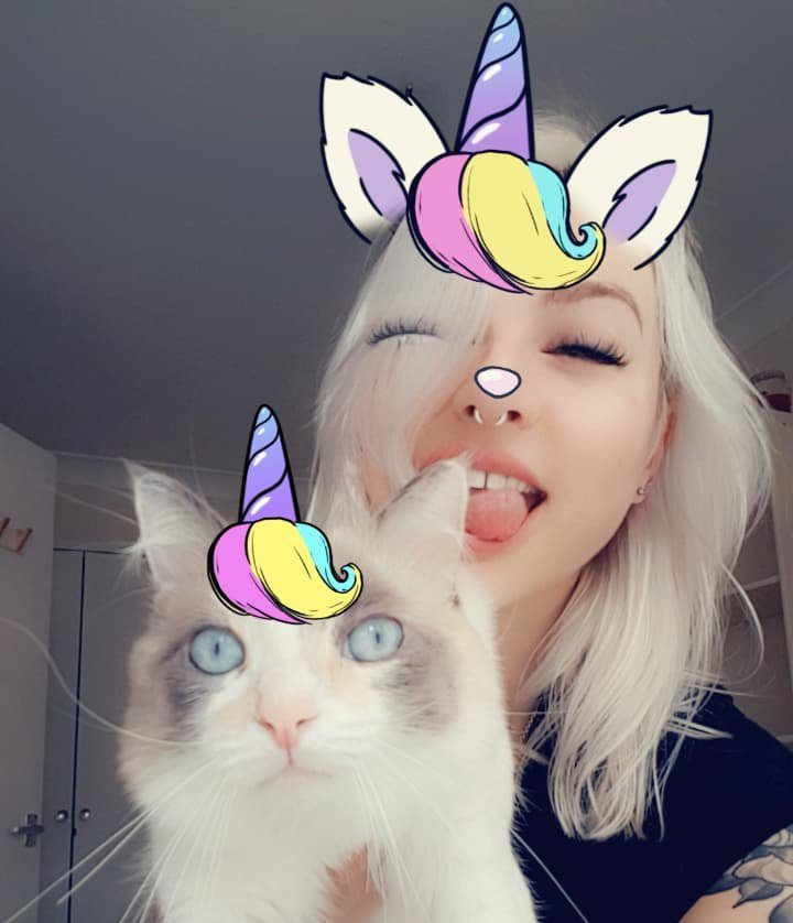 Snapchat just introduced new selfie filters meant specifically for your cat Picture: Lolly