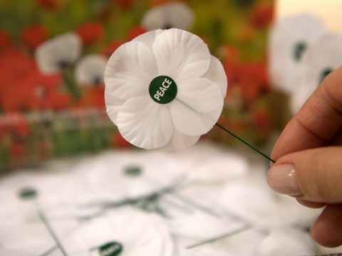 What does a white poppy mean?