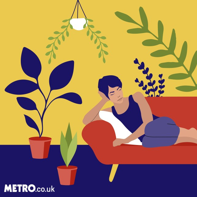 Millennials are obsessed with plants because we can't have houses or stable jobs (Picture: Virgin Miri/ Metro.co.uk) Metro Illustrations Illustration