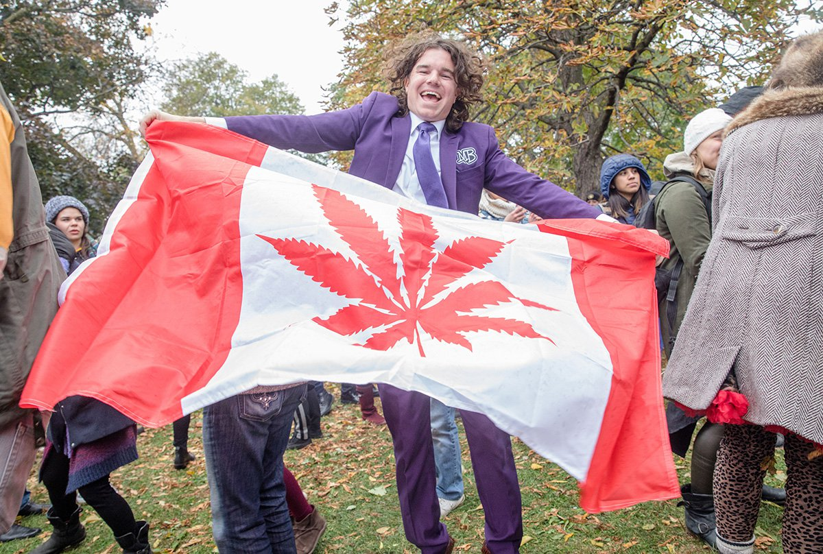 Canadians are still buying cannabis illegally as legal weed is 'too expensive'