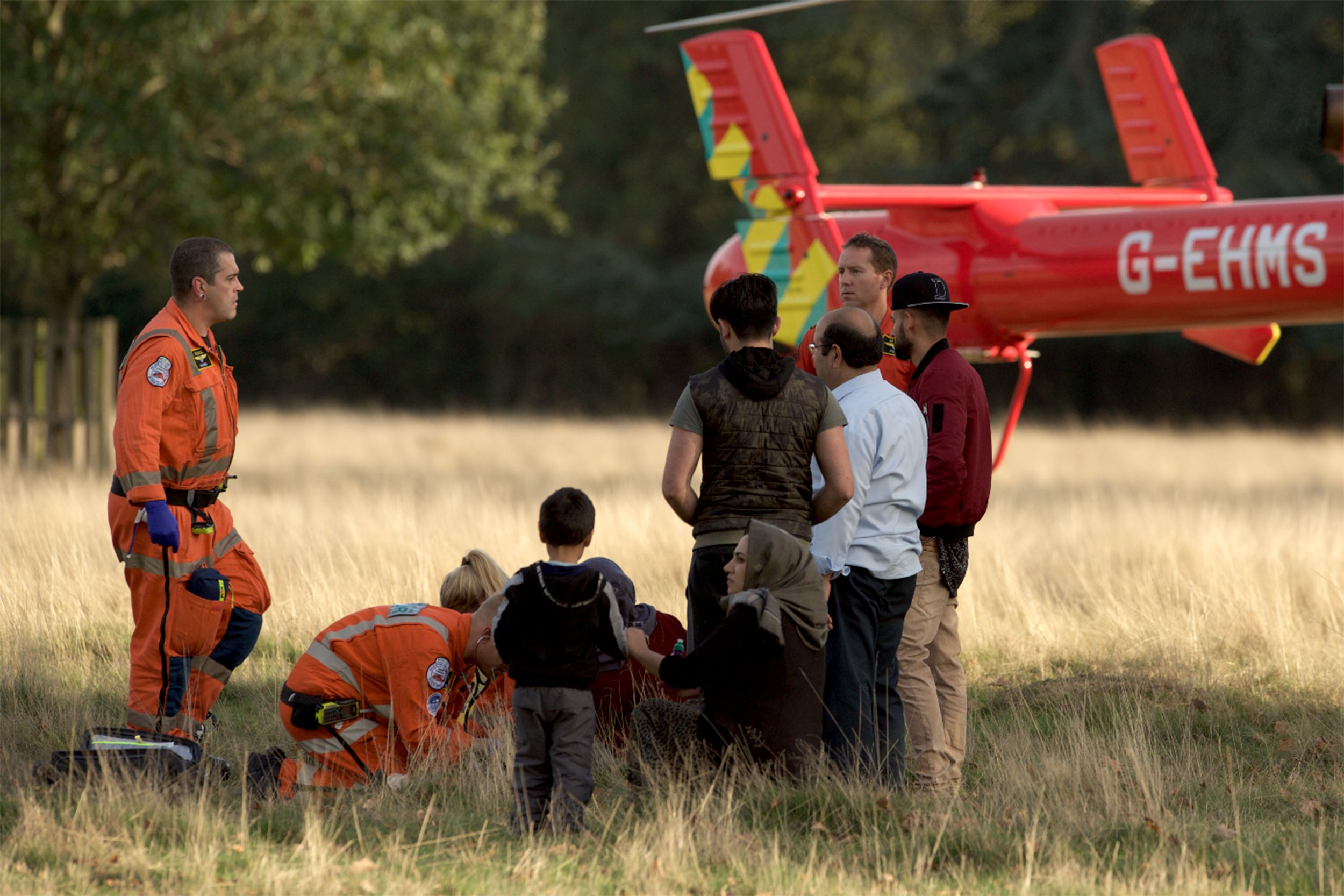 *MANDATORY BYLINE**PIXELATE/BLUR FACES TO OWN DISCRETION* PIC FROM Robert Piper /Caters News - (PICTURED: 24.10.2018 Young girl age 7-8 sustained injuries to her thigh by the antlers of a deerin the Bushy Park, Kingston upon Thames late this afternoon . The girl was attended to by the Air Ambulance Paramedics in the Park and taken by ambulance to one of the local Hospitals (Kingston upon Thames)) -The young girl sustained injuries to her thigh by the antlers of a deer in the Bushy Park, Kingston upon Thames, late this afternoon (24-10- 2018) at 15.55 .The paramedics of Air ambulance attended the little girl, that was later transferred to the nearest hospital.SEE CATERS COPY