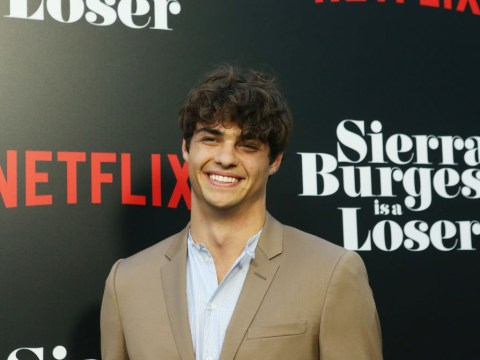 Noah Centineo nearly quit acting before becoming internet's boyfriend in To All The Boys I've Loved Before