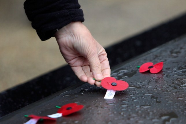 A red poppy being placed down on Anzac Day