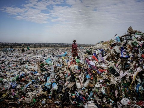 Now that 'single use' is the word of the year, plastic's days are numbered