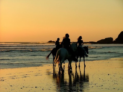 9 amazing adventures to have in Costa Rica