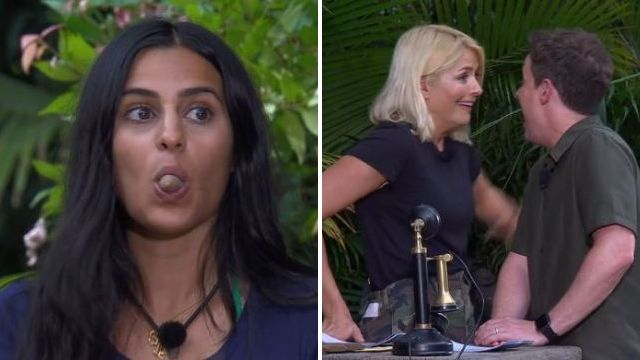 I'm A Celebrity's Holly and Dec in hysterics as Sair Khan eats a cow's teat in Bushtucker trial