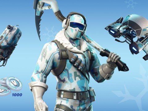 Fortnite: Deep Freeze Bundle – everything you need to know about the world's most popular video game