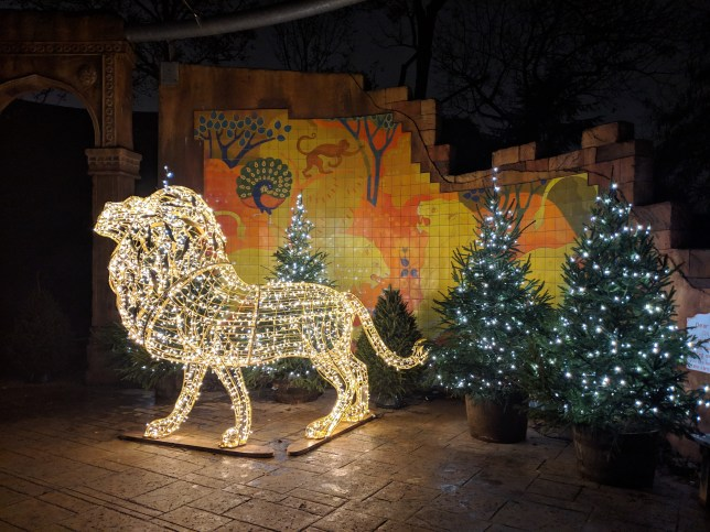 London Zoo At Christmas.You Can Have A Sleepover At London Zoo This Christmas