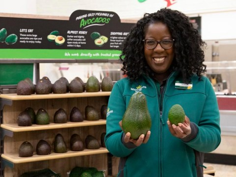 Morrisons launches giant 1kg avocados the size of emu eggs