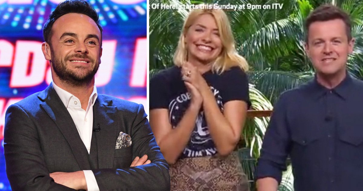 Ant McPartlin sends sweet message to 'little fella' Declan Donnelly and Holly Willoughby ahead of I'm A Celebrity premiere