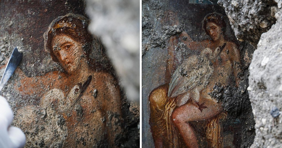 Woman looks directly at you as she has sex with a swan in newly found Pompeii art