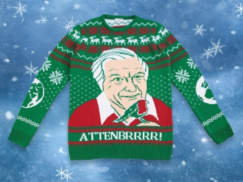 David Attenborough Christmas jumpers are here