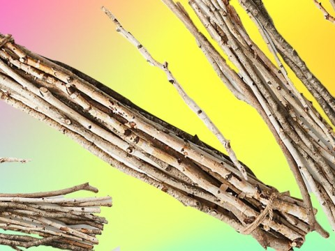 Anthropologie is selling a decorative bundle of twigs for £40
