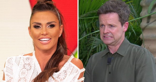 Katie Price and Dec Donnelly