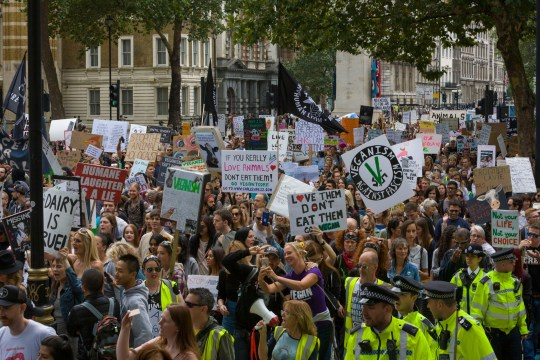 Mandatory Credit: Photo by Steve Parkins/REX/Shutterstock (9807858ab) The Official Animal Rights March London 2018, sees thousands of vegans take over the streets of London, demanding an end to all animal oppression. Animal rights demonstration, London, UK - 25 Aug 2018