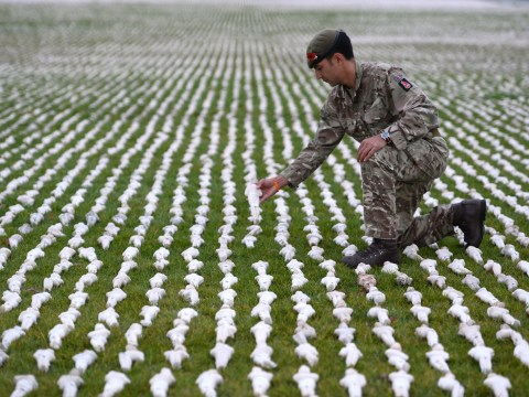Pictures of 72,396 figures on ground highlights scale of men killed in WWI without a grave