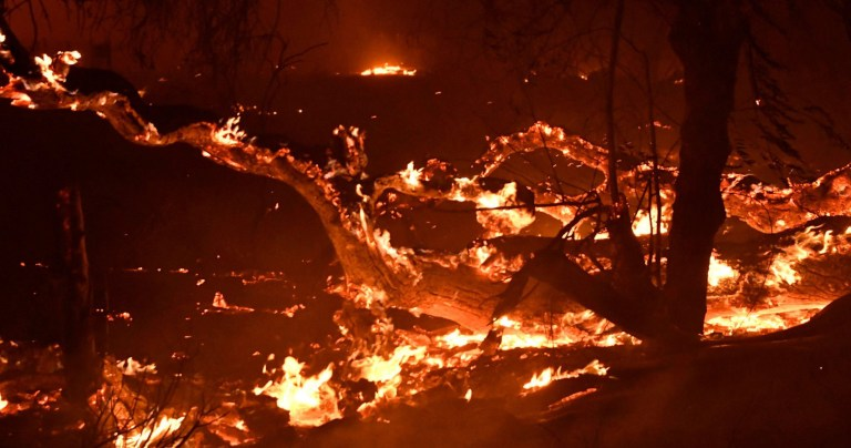 Mandatory Credit: Photo by Gene Blevins/ZUMA Wire/REX (9972377c) Overnight firefighters battle the Santa Rosa fire Thursday night into Friday morning California Wildfires, Oak Park, USA - 08 Nov 2018