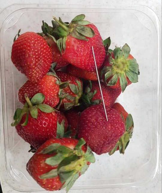 epa07157534 (FILE) - An undated handout photo made available by the Queensland Police shows a thin piece of metal seen among a punnet of strawberries, in Gladstone, Australia (reissued 17 September 2018). A woman was arrested following an investigation into the alleged contamination of strawberries containing needles in Queensland in September. EPA/QUEENSLAND POLICE / HANDOUT HANDOUT AUSTRALIA AND NEW ZEALAND OUT HANDOUT EDITORIAL USE ONLY/NO SALES
