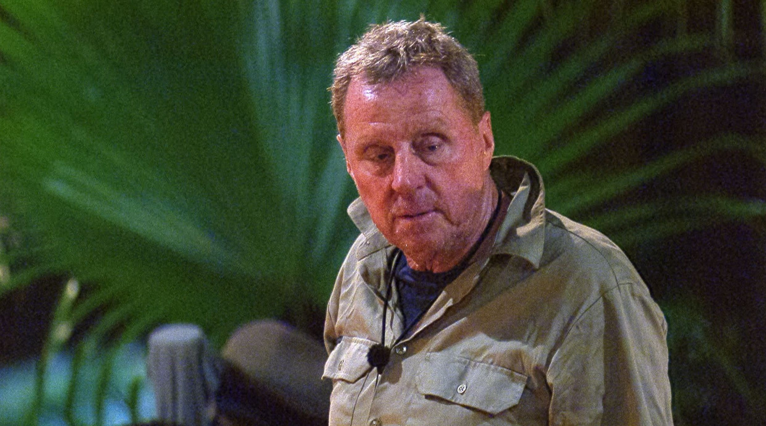Harry Redknapp branded a 'sore loser' as he clashes with Nick Knowles and Rita Simons over trial