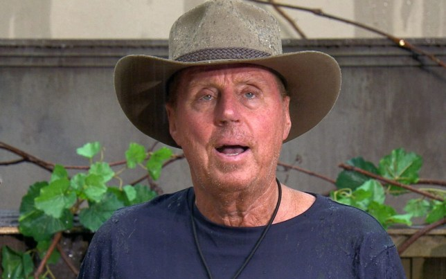 STRICT EMBARGO - NOT TO BE USED BEFORE 22:30 GMT, 22 NOV 2018 - EDITORIAL USE ONLY Mandatory Credit: Photo by ITV/REX (9989883n) Bushtucker Trial: Unleash The Beasts - Harry Redknapp 'I'm a Celebrity... Get Me Out of Here!' TV Show, Series 18, Australia - 22 Nov 2018