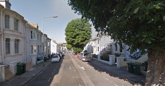 Seven cats attacked in Brighton Picture: Ditchling Rise, Brighton, UK Credit: Google