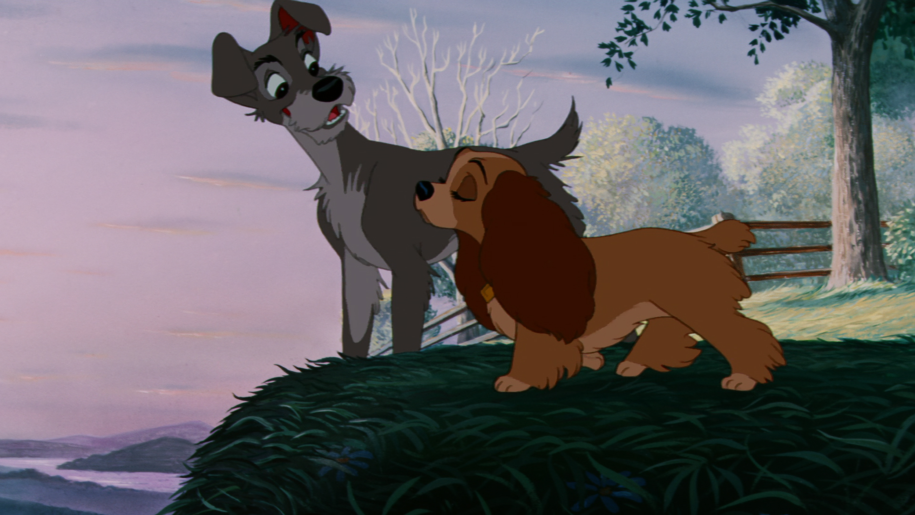 Disney's Lady And The Tramp remake just got a whole lot cuter as it's set to star real dogs