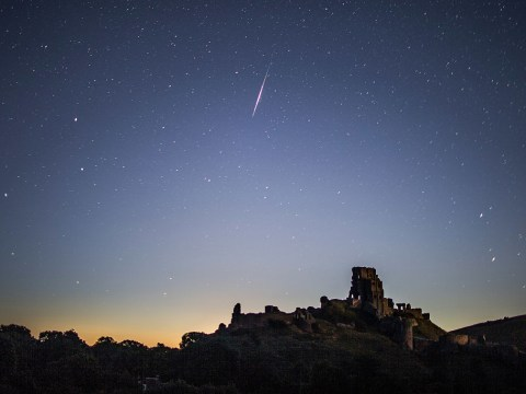 Perseids meteor shower 2019 peaks tonight above the UK