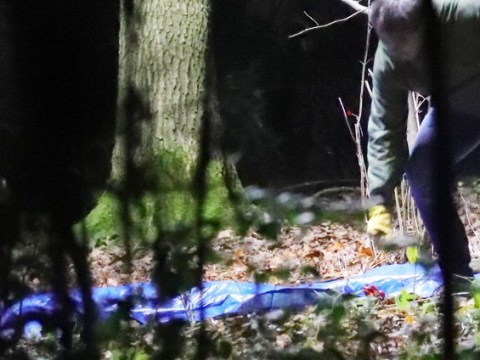 EastEnders spoilers: Murder in Walford as police discover a body bag in the woods