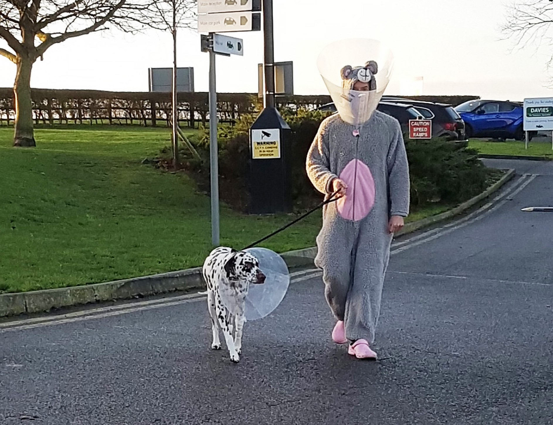 Vet Mike Farrell dressed up like a giant mouse to calm nervouseDalmatian Rupert.See SWNS story SWCAmouse. A caring vet dressed up as a giant mouse to calm a nervous rescue dog that needed surgery.Mike Farrell donned the huge grey and pink onesie-style outfit in order to examine Dalmatian Rupert, who needed an operation on his leg. Owner Sonya Schiff had brought her furry mouse romper suit for her devoted pet to sleep on because it smelt of her.But when the poorly pooch proved reluctant to be handled, Mike jumped into the costume to help him relax.
