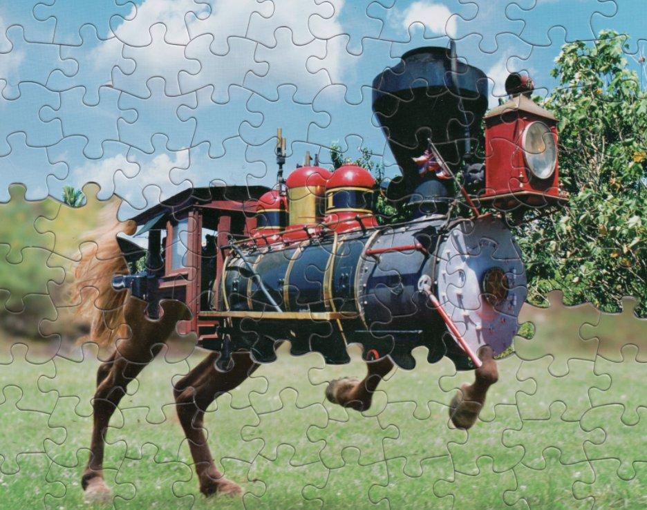 Tim Klein puzzlemontage.crevado.com