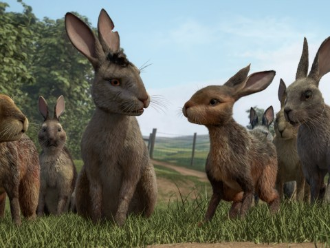 What time is Watership Down on BBC One tonight?