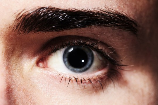 Closeup portrait of an eye with dilated pupil