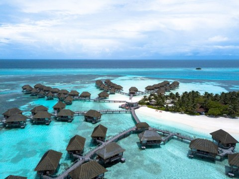 Why the Maldives is the perfect honeymoon destination