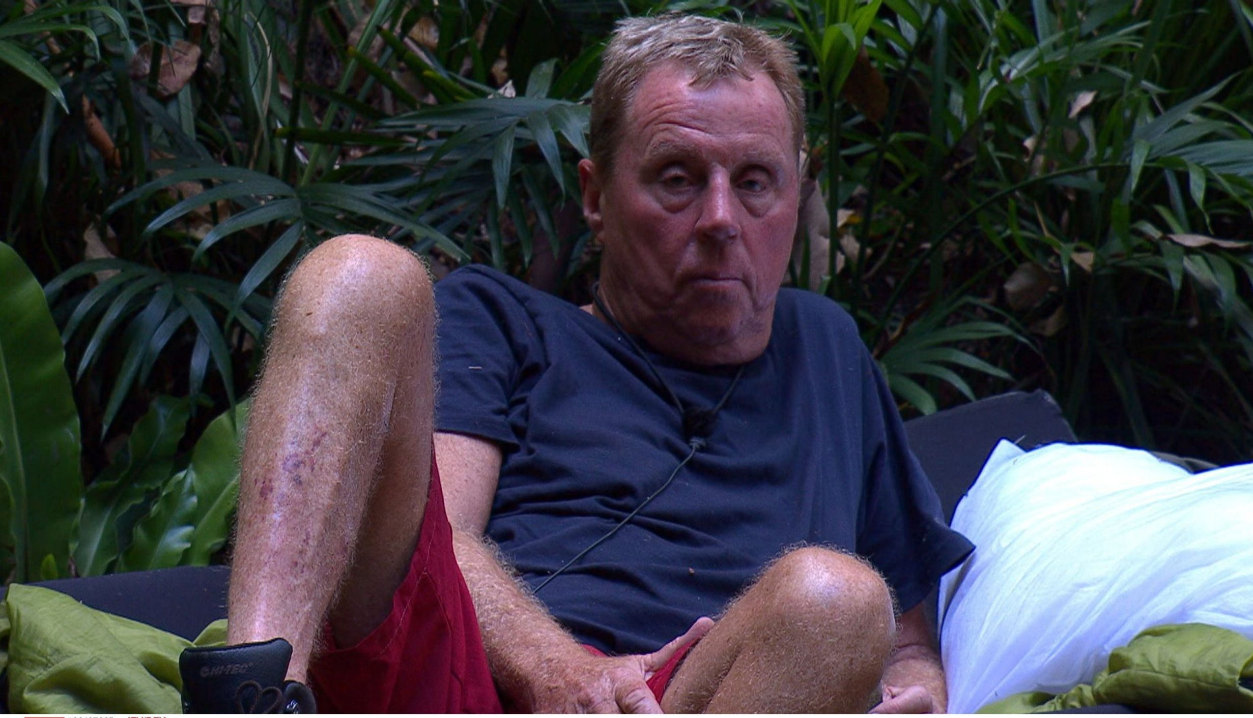 I'm A Celebrity fans left screaming as Harry Redknapp reminds everyone 'no-one died' as Malique leave camp
