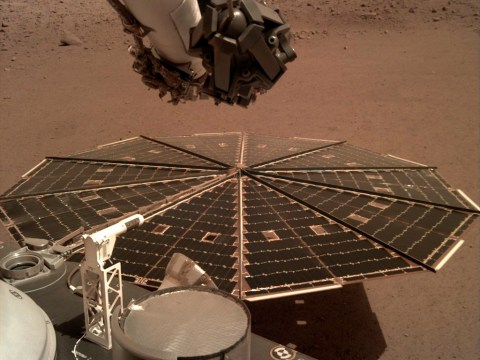 Tornado-like Martian dust storms have been battering Nasa's lander