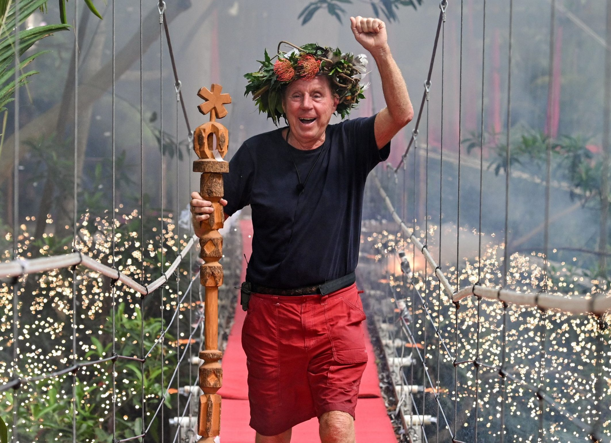 I'm A Celeb winner Harry Redknapp is going on tour in 2019… but we're not quite sure what with