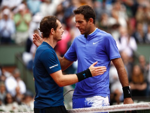 Juan Martin del Potro makes passionate plea for Andy Murray to 'keep fighting' after retirement announcement
