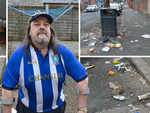 Estate flooded with rats after 'council fails to clean up rubbish'
